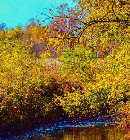 fall-creek