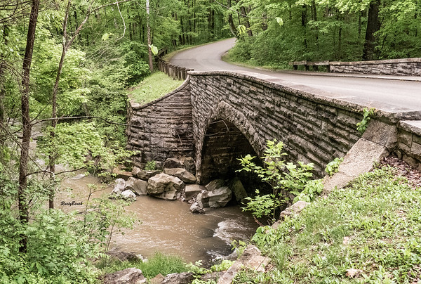 May 2019 McCormics Creek-24