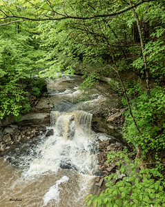 May 2019 McCormics Creek-8