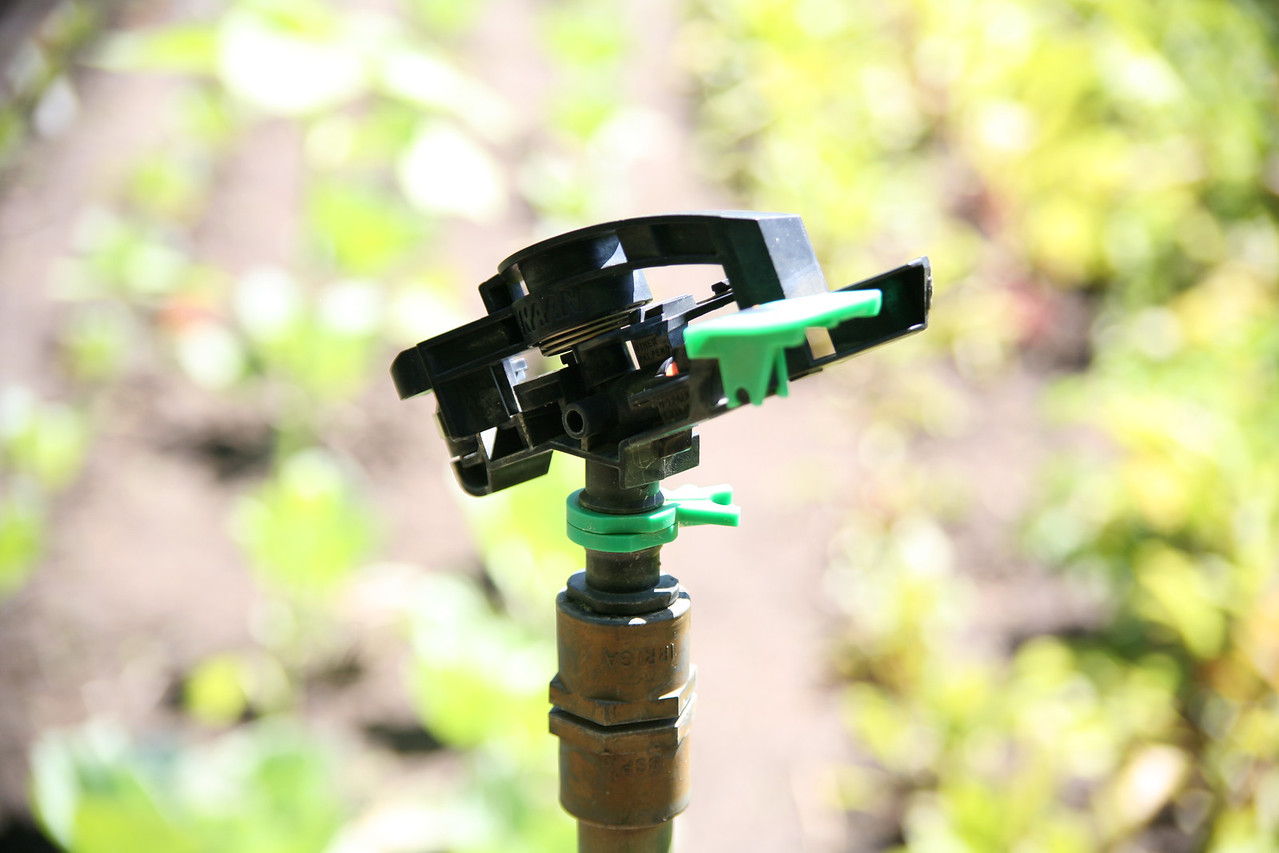 Sprinkler head for irrigation
