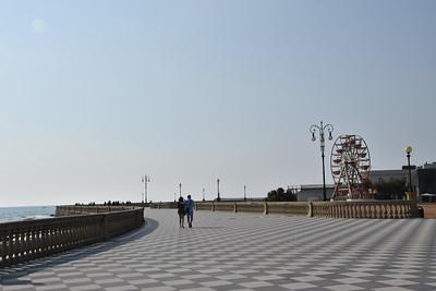 Livorno (338)