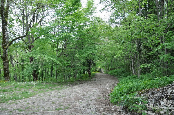 Santuario della Verna, Chiusi della Verna