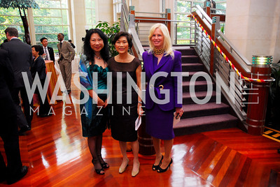 Sheree Wen,Chan Heng Chee,Susan Blumenthal,Japan Aid,May 31,2011,Kyle Samperton