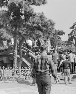Kamakura-10