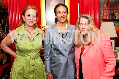 Judith Barnett, Ambassador of Oman Hunaina Sultan Al-Mughairy, Connie Coopersmith. Jeremy Ben-Ami's book launch. Home of Esther Coopersmith. Photos by Alfredo Flores. July 27, 2011