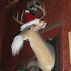 Deer Santa (in the Spirit Room)