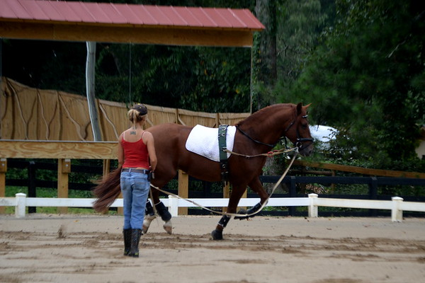 Katie and Instruido - 9-3-2012 005