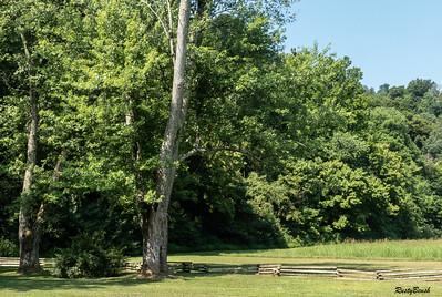 Knob Creek,Ky July2019-15