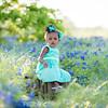 {Kids} Harper - bluebonnets (9 of 53)