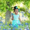 {Kids} Harper - bluebonnets (2 of 53)