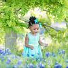 {Kids} Harper - bluebonnets (3 of 53)