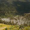 Thredbo on the Kosciuszko walk, Australia
