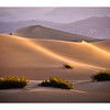 Death Valley Dunes at Daybreak