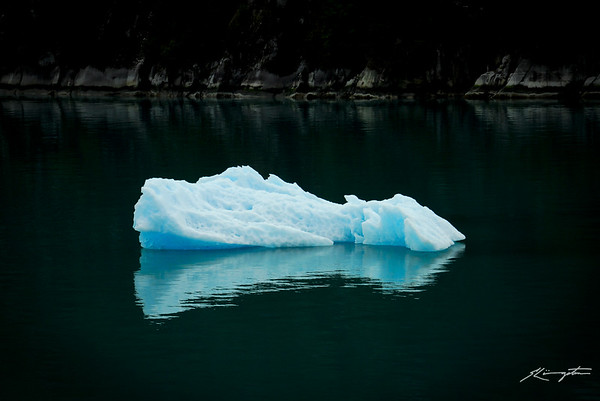 """The mind is like an iceberg, it floats with one-seventh of its bulk above water."" ~ Sigmund Freud"