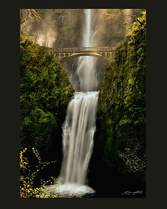 """There is a hidden message in every waterfall.  It says, 'If you are flexible, falling will not hurt you.!'"" ~ Mehmot Murat ildan"