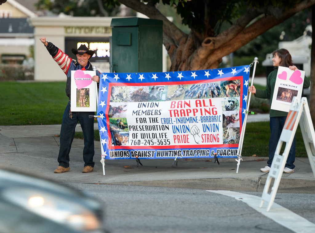 . Animal rights activists, Randal Massaro, left amd Diana Marmorstein protest in front of City Hall on the corner of Foothill Boulevard and Glendora Avenue the City\'s plan to trap and euthanize coyotes before the City Council meeting on Tuesday February 14, 2017.  (Photo by Keith Durflinger/San Gabriel Valley Tribune/SCNG)