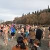 Golden Gardens - Polar Bear Plunge #1<br /> About 200 participants