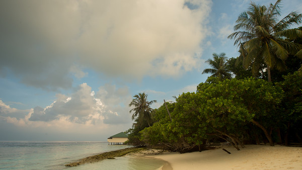 Embudu Island, South Male Atoll, Maldives.
