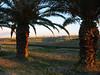 Gozo at dusk