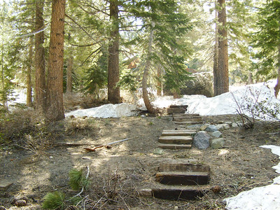 Mammoth cabin back yard-1.JPG