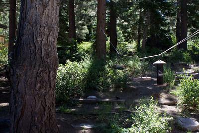 Mammoth Cabin 2011 08 02-1.CR2
