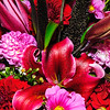 Flower Display, Market Trader Stall, Pike Place Market, Seattle, Washington