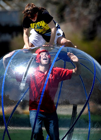 Chris Martin (cq), sophomore in enviromental science, laughs when Sarah Simonie (cq), sophomore in biology, jumps on top the the human hampster ball Martin is in during the Student Outreach Retention Center for Equity's student group olympics held at the University of Colorado in Boulder, Colorado April 15, 2010.  CAMERA/Mark Leffingwell