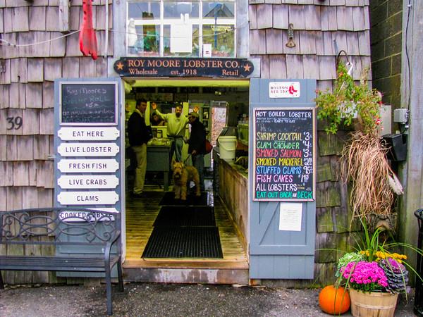 bug shop