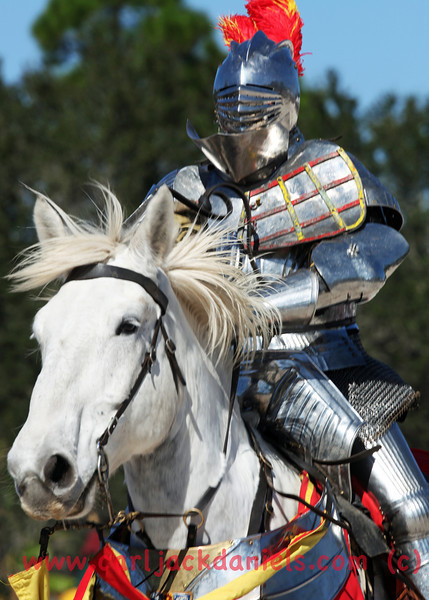 Knight on Horse back