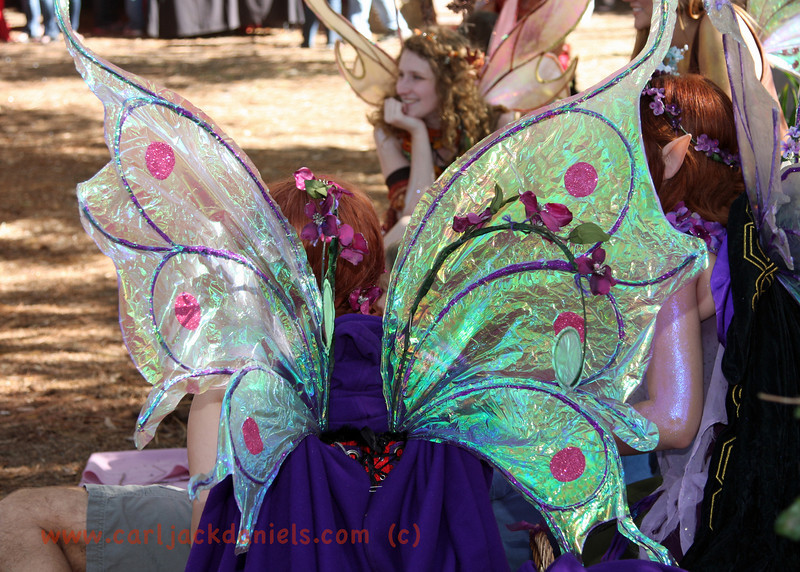 Fairies - Fairy Wings
