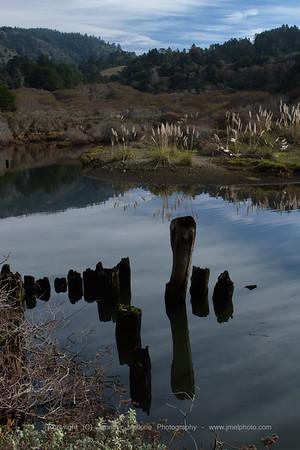 Reflections near Elk