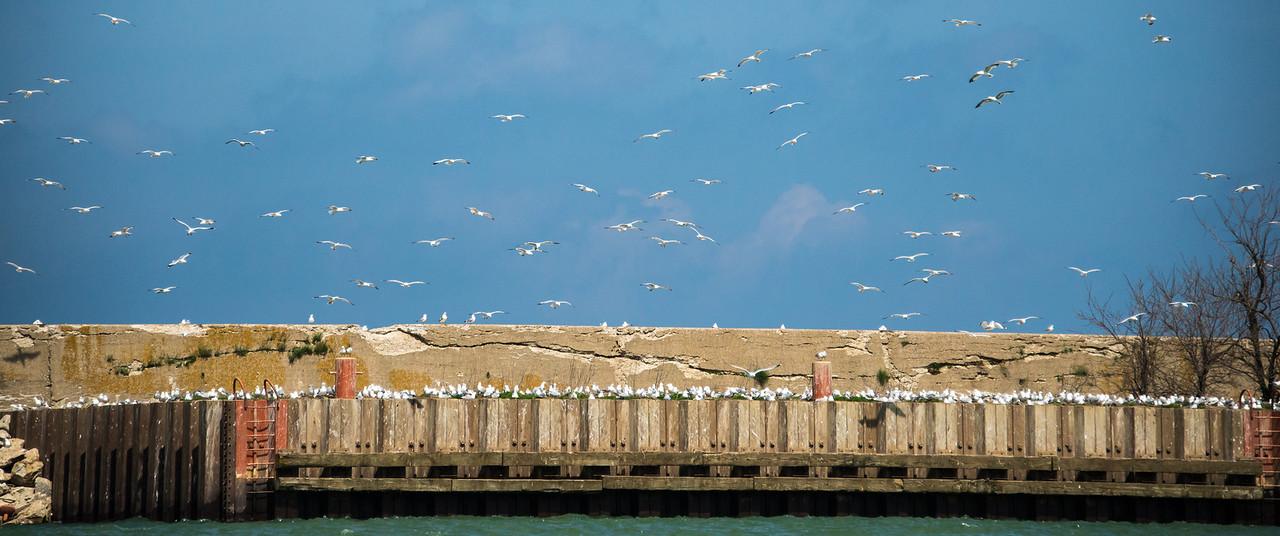 Harbor Beach breakwall - May 2013