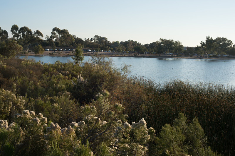 Lake Murray-8492