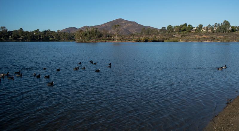 Lake Murray-8449