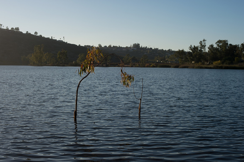 Lake Murray-8487