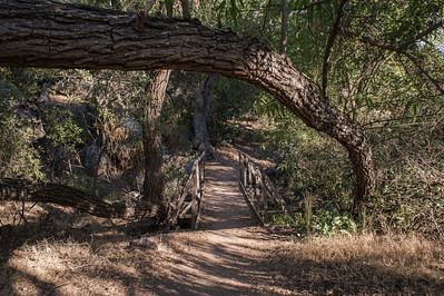 Mission Trails-2199