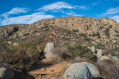 Mission Trails-2209