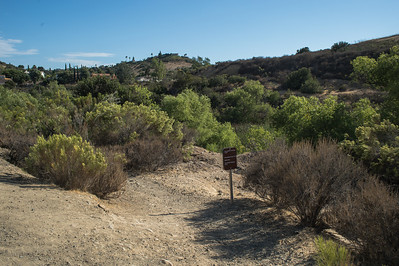 Mission Trails-2180