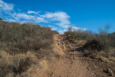 Mission Trails-2202