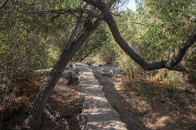 Mission Trails-2184