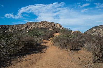 Mission Trails-2206