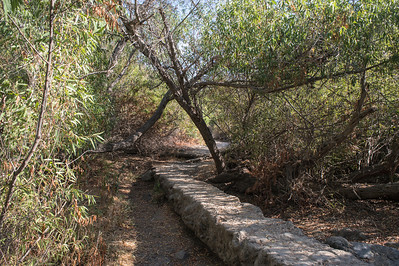 Mission Trails-2186