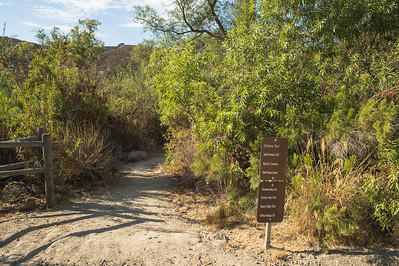 Mission Trails-2183