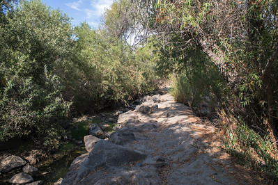 Mission Trails-2185