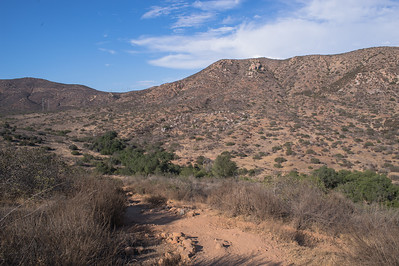 Mission Trails-2196