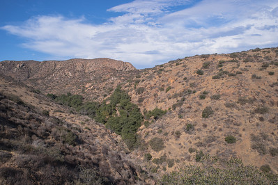 Mission Trails-2189