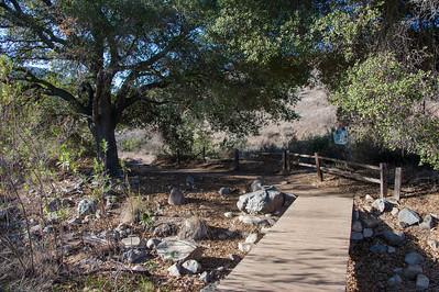 Oak Canyon_Jan2014-8037