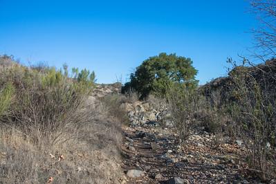 Oak Canyon_Jan2014-8035
