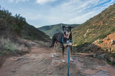 20151007_DSC8581-EditOak Canyon