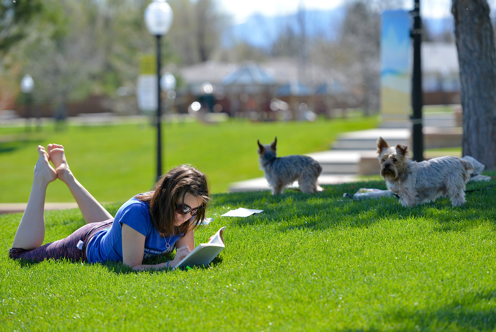 Justin Sheely | The Sheridan Press<br /> Amy Beam reads a book under the sun with her dogs Diesel and Tank Wednesday afternoon at Whitney Commons in Sheridan. The rest of the week is expected to be much warmer, Saturday's high could reach in the high 80s.